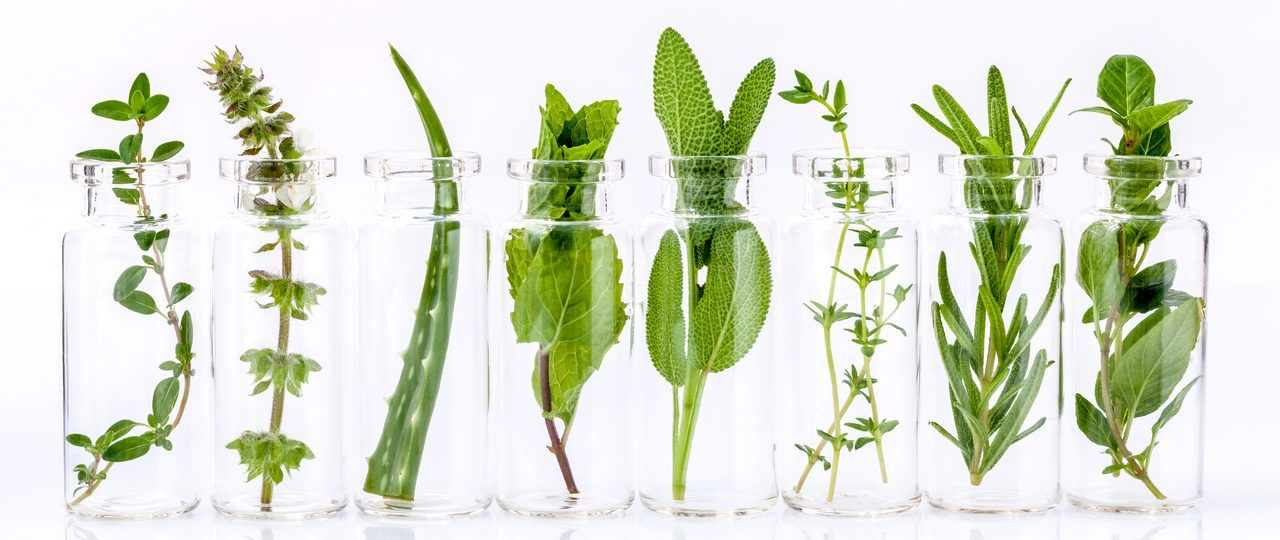 Natural herbs and ingredients in clear glass bottles.